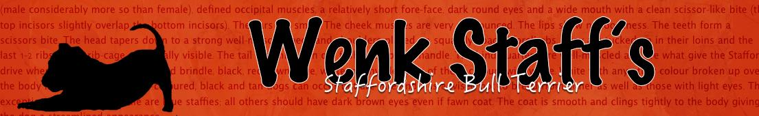 Wenk Staff's